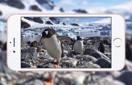 Apple-reklamok-pingvin-cover-746x419-746x419