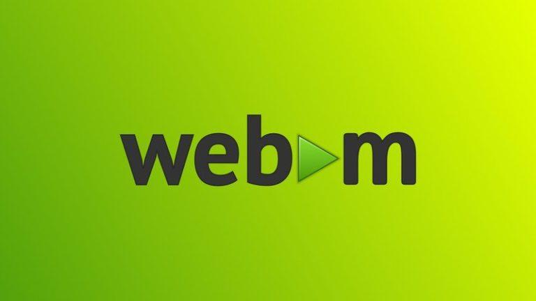 Safari bude po 11 letech podporovat otevřený kodek WebM